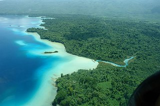 Lacandon Jungle area of rainforest