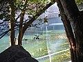 Laguna ecoparque Chapultepec - panoramio.jpg