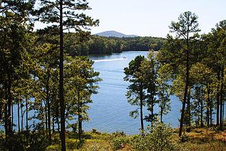Garvan Woodland Gardens - Hot Springs' Lake Hamilton, viewed from a Garvan Woodland Gardens trail.