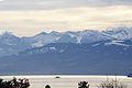 Lake Zurich 6.jpg