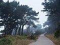 Land's End, San Francisco (35393412181).jpg
