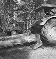 Landbouwmachines, werktuigen, bosbewerking, auto's, boomstammen, sleepwerkzaamhe, Bestanddeelnr 253-5106.jpg