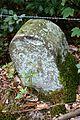 Landschaftsschutzgebiet Solling – Lunau-Tal bei Hardegsen - Alte Grenzsteine (2).jpg