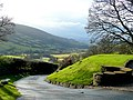 Lane in the Black Mountains - geograph.org.uk - 1634515.jpg