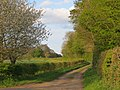 Lane near Parsonage Farm - May 2012 - panoramio.jpg