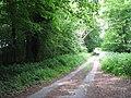Lane to Bluestone Station - geograph.org.uk - 1319172.jpg