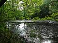 Langenfeld Nähe Haus Graven 0029.jpg