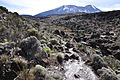 Lascar As we climb we see less vegetation. We are entering the alpine desert (4464694182).jpg