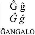 Latin small and capital letter g with circumflex.jpg
