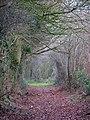 Leathercoat Lane - geograph.org.uk - 1080889.jpg