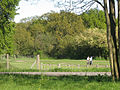 Leaving Wimbledon Common - geograph.org.uk - 1273825.jpg
