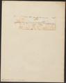 Lepisosteus osseus - 1700-1880 - Print - Iconographia Zoologica - Special Collections University of Amsterdam - UBA01 IZ14400009.tif