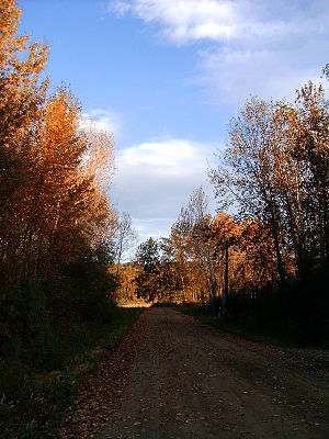 Fort Liard - Image: Liard autumn