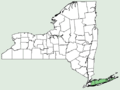 Linum intercursum NY-dist-map.png