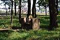 Liubeshiv Volynska-Polish cemetery-view-3.jpg