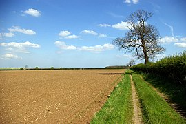 Looking towards Camp Covert - geograph.org.uk - 164472.jpg