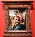 Lorenzo di credi, madonna col bambino, 1520 ca. 01.jpg