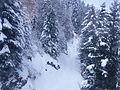 Luchon Superbagneres neige dans les arbres - 2016d.jpg