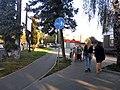 Lviv Bike Lane 1.jpg