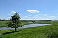 Lyubotyn Lake №2.jpg