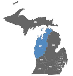 Area code 231 - Map of area code 231 in Michigan.