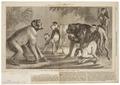 Macacus arctoides - 1868 - Print - Iconographia Zoologica - Special Collections University of Amsterdam - UBA01 IZ20000103.tif