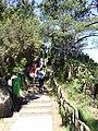 Madeira - Eira do Serrado (11773548036).jpg