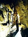 Mammoth Cave National Park NEWENT 6.jpg