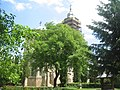 Manastirea Dragomirna62.jpg