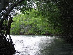 Lajas Puerto Rico Wikipedia La Enciclopedia Libre
