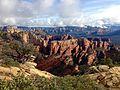Manzanita overlooking Fay Canyon (16300949856).jpg