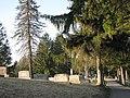Maplewood Cemetery (3399990796).jpg