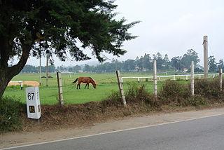 A5 road (Sri Lanka)
