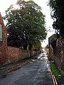 Marsh Lane - geograph.org.uk - 265820.jpg