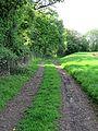 Matching Pond embankment footpath at Matching, Essex, England.jpg