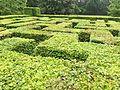 Maze at Het Oude Loo.jpg