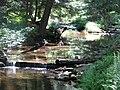 McCall Dam State Park18.jpg