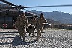 Medical evacuation training 130325-A-BX842-264.jpg