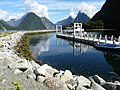 Milford Sound, New Zealand (005).JPG