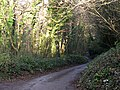 Minor Road through a Wooded Valley - geograph.org.uk - 503148.jpg