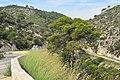 Mirador del Pas de la Mala Dona - Sitges.jpg