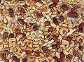 Mixed nuts spread.jpg