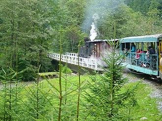 Vișeu de Sus - Image: Mocanita Valea Vaserului