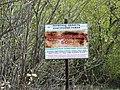 "Monument of Nature ""Chernikov Bor"".Памятник природы ""Черниковский бор"" - panoramio.jpg"