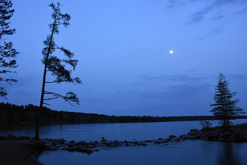 File:Moon rises above the trees at the Mississippi River Headwaters, May 19, 2016.jpg