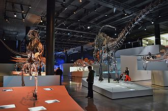 Houston Museum of Natural Science - Morian Hall of Paleontology