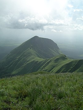 Mount Nimba Strict Nature Reserve-108445.jpg
