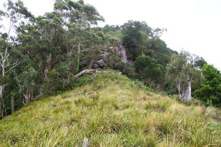 Mount Royal - basalt outcrop 1100 metres asl
