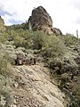 Mt. Pinter Base Loop, Tonto National Forest, Butcher Jones Trail, Fort McDowell, AZ 85264, USA - panoramio (66).jpg