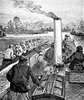 Muttlebury coaching CUBC from steamer 1892.jpg
